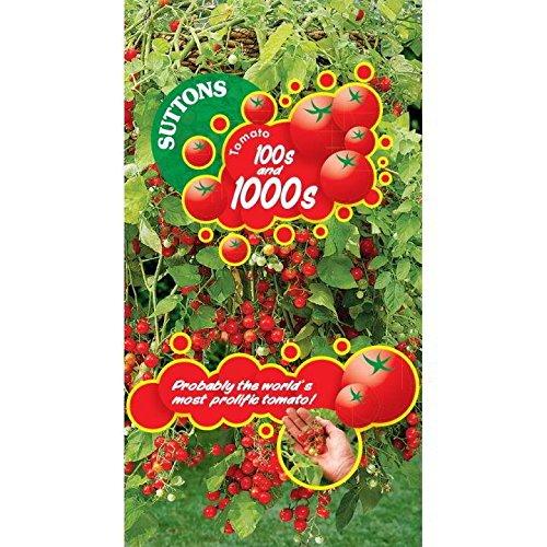 Suttons Seeds 180648
