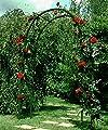 Rosenbogen aus Kunststoff grün von Ing. G. Beckmann KG auf Du und dein Garten