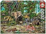 Educa 16013 - Puzzle - Afrikanischer Dschungel, 2000-Teilig