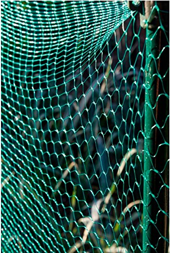 Garden Netting Net Anti Bird Pond Net Protection Water Apollo *1 pack* 6m x 4m