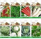 alkarty winter vegetable seeds kit-12 fo...