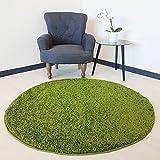 Flauschiger Teppich Langflor Hochflor Shaggy Teppiche Modern Wohnzimmer Flokati Einfarbig Uni | verschiedene Maße | Kinderzimmer & Jugendzimmer geeignet | Schadstofffrei (Grün, Rund 200 x 200 cm)