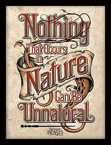 Les Animaux Fantastiques FP11871P-PL Fantastic Beasts (Nature) Objet Souvenir, Contreplaqué, Multicolore, 30 x 40 cm