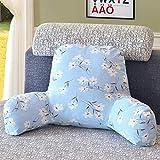 QWERTYUI Bett Fluidsysteme Lesung-Kissen,Herausnehmbaren Taille dämpfung Büro Designer-lenden Sofa Sessel Pads lendenwirbelsäule-H 58x40x25cm(23x16x10)