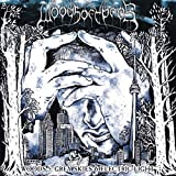 Woods Of Ypres: Woods 5:Grey Skies & Electric Light [Vinyl LP] (Vinyl)