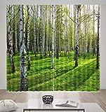 HONGYZCL Grüner Digitaler Vorhang Der Wiese 3D, Der Für Hauptschlafzimmerwohnzimmer Passend Ist,264Cm(W)×213Cm(H)