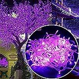 TianranRT Fenster Vorhang Lichter String Fee Lampe Hochzeit Party Dekor Markieren 300 LED (Lila)