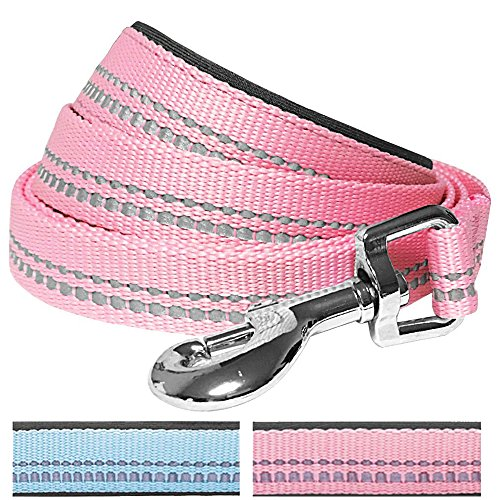 Blueberry Pet 3M Reflective Dog Lead in Pastel Colors with Neoprene Padded Handle, Matching Collar & Harness Available Separately