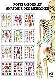 Sport Thieme Miniposter-Booklet, Anatomie