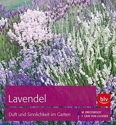 Preisvergleich Produktbild Lavendel: Duft und Sinnlichkeit im Garten
