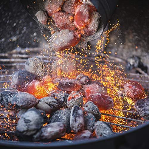 61q8ztSSWKL. SS500  - Blazebox 10KG BBQ Charcoal Premium Restaurant Grade Lumpwood, Large Chunks For Longer Burning Barbecues (1 x 10KG Bag)