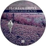 A Spring Called Autumn (KlangTherapeuten Remix) [feat. Leonard Bywa]