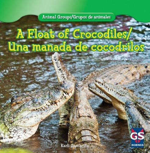 A Float of Crocodiles/Una manada de cocodrilos (Animal Groups/Grupos de animales)