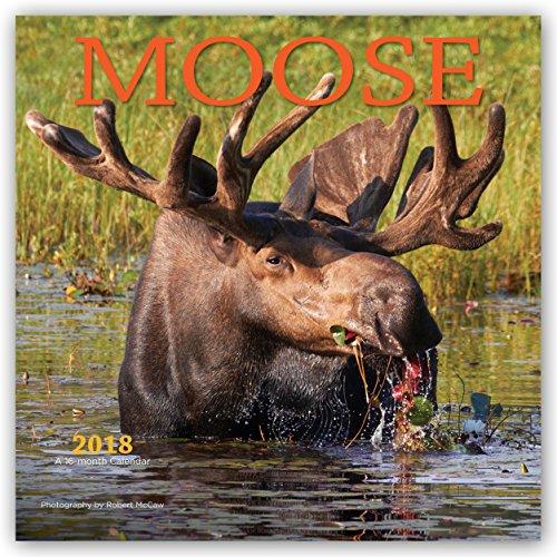 Descargar Libro Moose - Elche 2018 - 16-Monatskalender: Original BrownTrout/Wyman Publishing-Kalender de Wyman