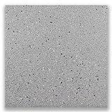Fliese Feinsteinzeug grau, 30x30 cm, frostsicher, sehr robust, ideal geeignet für Keller, Abstellräume und Stiegenhäuser (1 Paket)