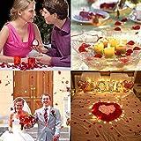 Vegena 2500 Stück Rosenblüten, Seide Rosenblätter Rosen Blätter Blüten Kunstblumen Seidenblumen für Romantische Atmosphäre und Hochzeit, Geburt, Taufe, Valentinstag, Geburtstag Party Dekoration (Rot) - 7