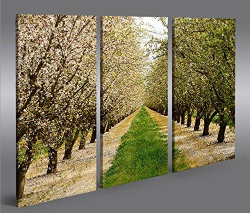 quadro-moderno-fioritura-primavera-alberi-mandorli-3p-stampa-su-tela-quadro-x-poltrone-salotto-cucin