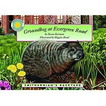 Groundhog at Evergreen Road (Smithsonian's Backyard) by Susan Korman (2003-04-06)