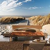 Fototapete 400x280 cm - ALLE TOPSELLER auf einen Blick ! Vlies PREMIUM PLUS - NORTH SEA DUNES - Strand Meer Nordsee Ostsee Beach Wasser Blau Himmel Sonne Sommer - no. 038