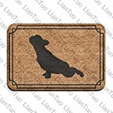 Doormat shirt French Bulldog Fashion 15.7 x 23.6 in Assorbente Antiscivolo Pavimento Tappeto zerbino