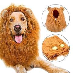 Idea Regalo - Etpark Cane Pet Costume, Grande Medio Cane Regolabile Parrucca leone con Orecchie per Halloween Natale Partito Vestire
