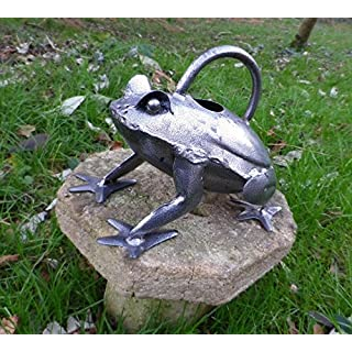 Frog watering Can Silver