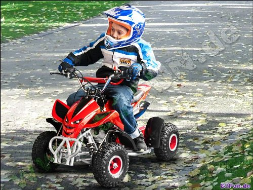 Mini Quad ATV Kinderquad 49 cc Powerquad 49ccm 2011 NEU