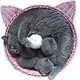 Da Jia Inc hochwertig süße Rattan Katze Nest Katzenkorb Katze Bett mit einem Mat Zwei Farben Sind Verfügbar (Pink)