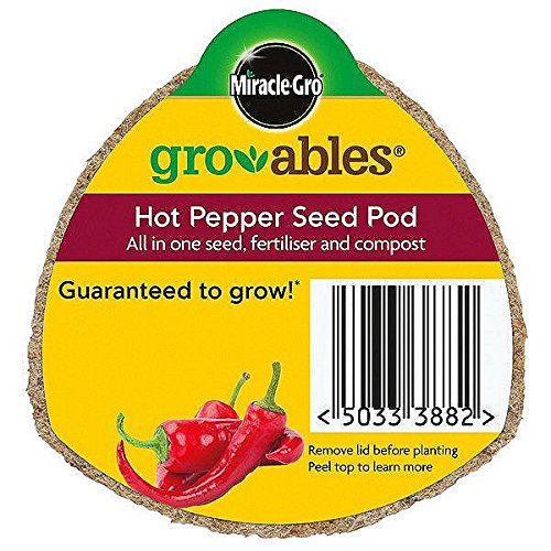 miracle-gro-100088-gro-ables-hot-chilli-pepper-seed-pod