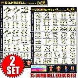 Eazy How To Workout-Poster mit Hantel-Übungen, 51x 73cm, Ausdauertraining, Muskelaufbau und...