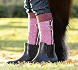 LITTLE SISTER by HKM Reitsocken -Bonnie-