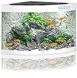 Juwel Aquarium 16550 Trigon 190, buche - 3