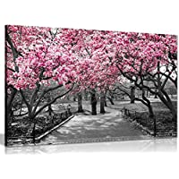Black & White Wall Art Pink Blossoms Canvas Wall Art Picture Print (30x20in)
