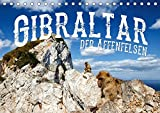 Gibraltar - der Affenfelsen (Tischkalender 2019 DIN A5 quer): Europas einzige wildlebende Affen in einer atemberaubenden Landschaft (Monatskalender, 14 Seiten ) (CALVENDO Orte) -