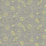 Emily&Joe's fabrics Stoff Jersey Lost IN Space grau