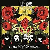 A Crow Left Of The Murder (Gatefold Sleeve) [2LP Vinyl] [Vinilo]