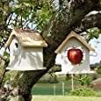Plant Theatre Bird Nesting Box & Apple Feeder Set, Gift Boxed - Ideal Present
