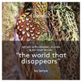 The World That Disappears (Original Mix)