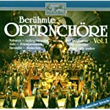 Berühmte Opernchöre Vol. 1