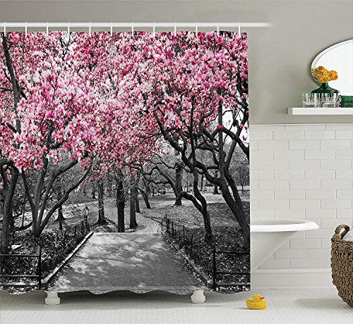 Park Central Hotel Nyc (SHUHUI NYC Decor Collection Blüten im Central Park Kirschblüte Bäume Wald Frühling Frühling Landschaft BildBad Duschvorhang Set mitRosa Grau)