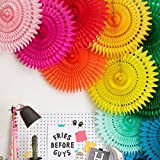 Best Party Decorations - My Party Suppliers Paper Fans for Decoration Review
