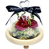 ThreeH Handmade Fresh Flower Rose with Beautiful Creative Heart Design, Warm White