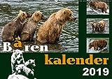 Bärenkalender (Wandkalender 2019 DIN A2 quer) - Max Steinwald