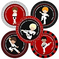 Karate Boy Thank You Sticker Labels - Kids Birthday Martial Art Party Favor Labels - Set of 30