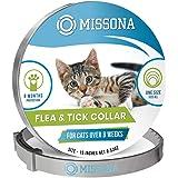 RM E-Commerce - Cuccia per cani in vimini rettangolare con cuscino grigio, per cani grandi e piccoli, larghezza 80 cm