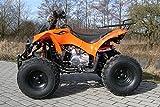 Kinder Quad S-10 125 cc Motor Miniquad 125 ccm orange Warriorer - 2