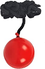 Sixon Sports Leather Hanging Cricket Training Ball (Pack of 1, Red)