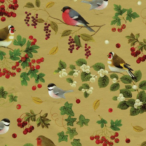 Entertaining with Caspari Continuous Gift Wrapping Paper, Winter Birds Gold, 8-Feet, 1-Roll by Caspari