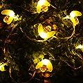 Solar Lichterkette, Tomshine Solar Led Bienen Beleuchtung im 6.3 Meter 30er Warmweiß, 8 Modi Aussen Solar Lichterkette mit Lichtsensor für Garten, Hochzeit, Party von Tomshine