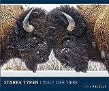 STARKE TYPEN - WELT DER TIERE 2016 - mit witzigen Bildunterschriften - Tier-Kalender 60 x 50 cm